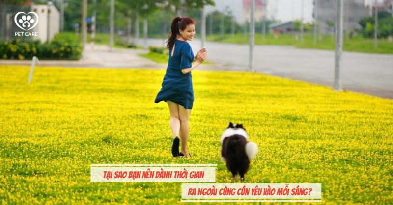 Tại sao bạn nên dành thời gian ra ngoài cùng cún yêu vào mỗi sáng?