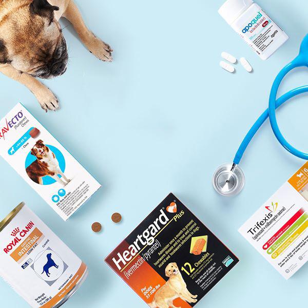 Thuốc thú y cho chó mèo
