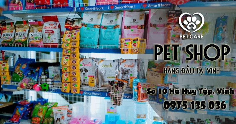 Pet Care - điểm đến mua sắm, Pet Shop tại Vinh bạn nhất định phải ghé mua